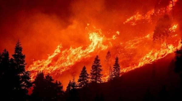 تشدید آتش سوزی کالدور در غرب آمریکا